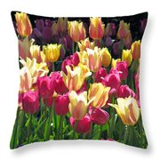 Tulips - Field With Love 35 Throw Pillow