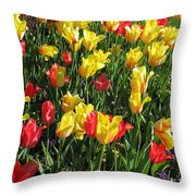 Tulips - Field With Love 49 Throw Pillow