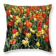 Tulips - Field With Love 50 Throw Pillow