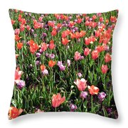 Tulips - Field With Love 55 Throw Pillow