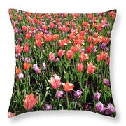 Tulips - Field With Love 56 Throw Pillow