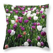 Tulips - Field With Love 60 Throw Pillow