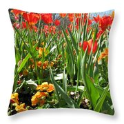 Tulips - Field With Love 64 Throw Pillow