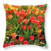 Tulips - Field With Love 68 Throw Pillow