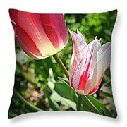 Tulips In Red And White Throw Pillow