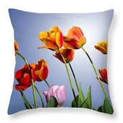 Tulips In Sun Light Throw Pillow by Trevor Wintle