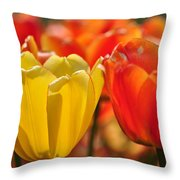 Tulips In The Midst Throw Pillow