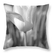 Tulips - Infrared 06 Throw Pillow