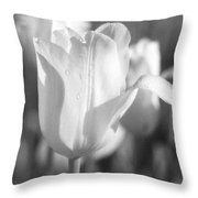 Tulips - Infrared 08 Throw Pillow