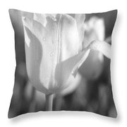 Tulips - Infrared 09 Throw Pillow