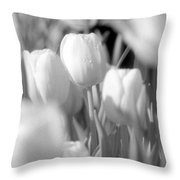 Tulips - Infrared 11 Throw Pillow