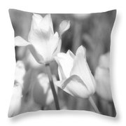 Tulips - Infrared 12 Throw Pillow