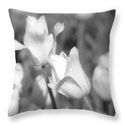 Tulips - Infrared 13 Throw Pillow