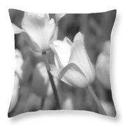 Tulips - Infrared 14 Throw Pillow
