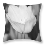 Tulips - Infrared 15 Throw Pillow