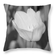 Tulips - Infrared 16 Throw Pillow
