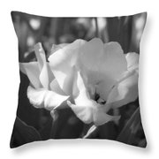 Tulips - Infrared 19 Throw Pillow