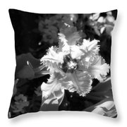 Tulips - Infrared 24 Throw Pillow