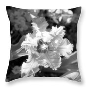 Tulips - Infrared 25 Throw Pillow