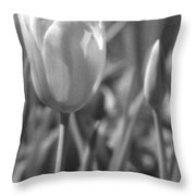 Tulips - Infrared 28 Throw Pillow