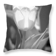 Tulips - Infrared 29 Throw Pillow