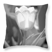 Tulips - Infrared 30 Throw Pillow
