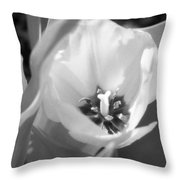 Tulips - Infrared 31 Throw Pillow