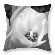 Tulips - Infrared 33 Throw Pillow