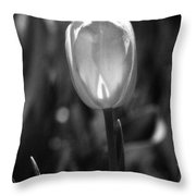Tulips - Infrared 34 Throw Pillow