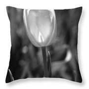 Tulips - Infrared 35 Throw Pillow