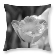 Tulips - Infrared 40 Throw Pillow