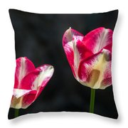 Tulips Of A Kind Throw Pillow