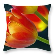 Tulips On Black 2a Throw Pillow