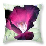 Tulips - Perfect Love - Photopower 2042 Throw Pillow