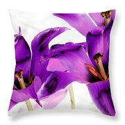 Tulips - Perfect Love - Photopower 2081 Throw Pillow