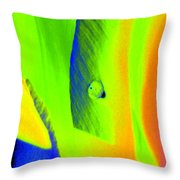 Tulips - Perfect Love - Photopower 2193 Throw Pillow