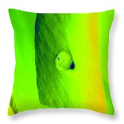 Tulips - Perfect Love - Photopower 2194 Throw Pillow