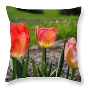 Tulips Red Pink Tulip Flowers Art Prints Throw Pillow