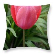 Tuliptime Throw Pillow