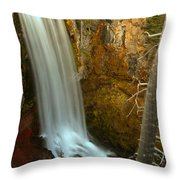 Tumalo And The Tree Throw Pillow