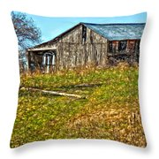 Tumbledown Throw Pillow by Steve Harrington