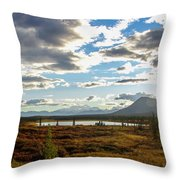 Tundra Burst Throw Pillow by Chad Dutson