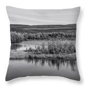 Tundra Pond Reflections Throw Pillow