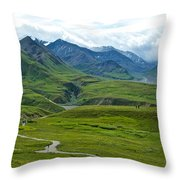 Tundra View From Eielson Visitor's Center In Denali Np-ak  Throw Pillow