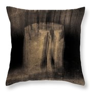Architects Of Willowdell Throw Pillow