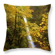 Tunnel Falls  Throw Pillow