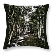Tunnel Of Trees ... Throw Pillow