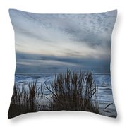 Tunnel Park Through The Grass Holland Michigan Throw Pillow