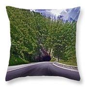 Tunnel Thru The Mountain Throw Pillow