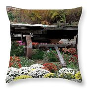 Tunnel To Fall Throw Pillow